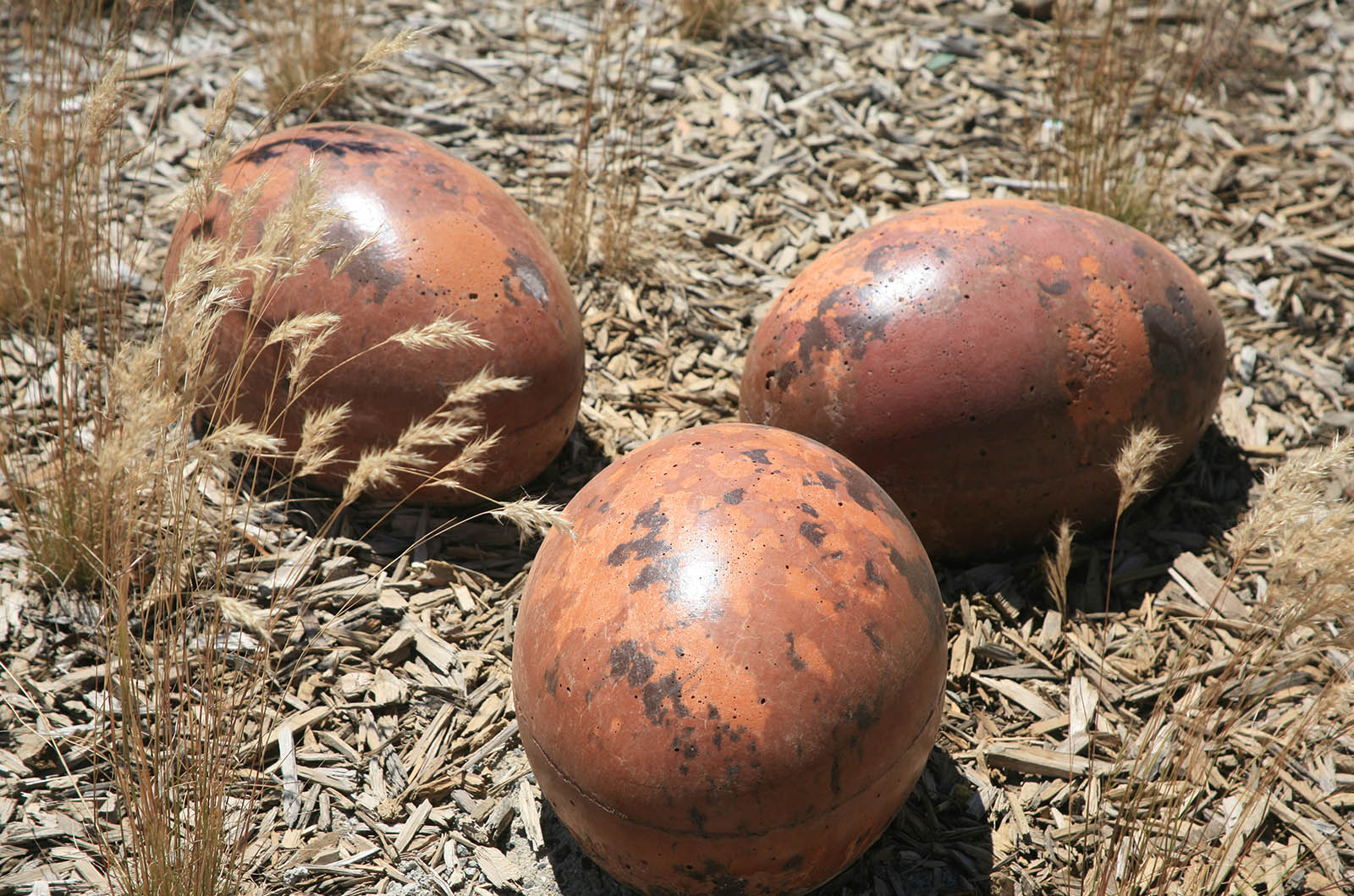 Customs_0002_Polished concrete eggs!