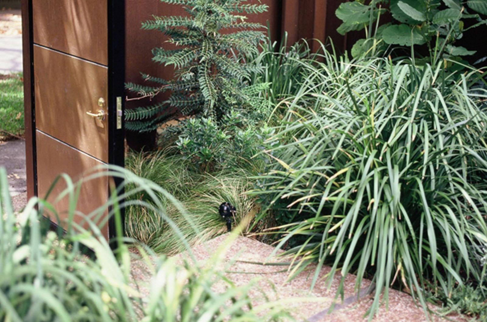 Front Garden_0007s_0002_Wyles-6