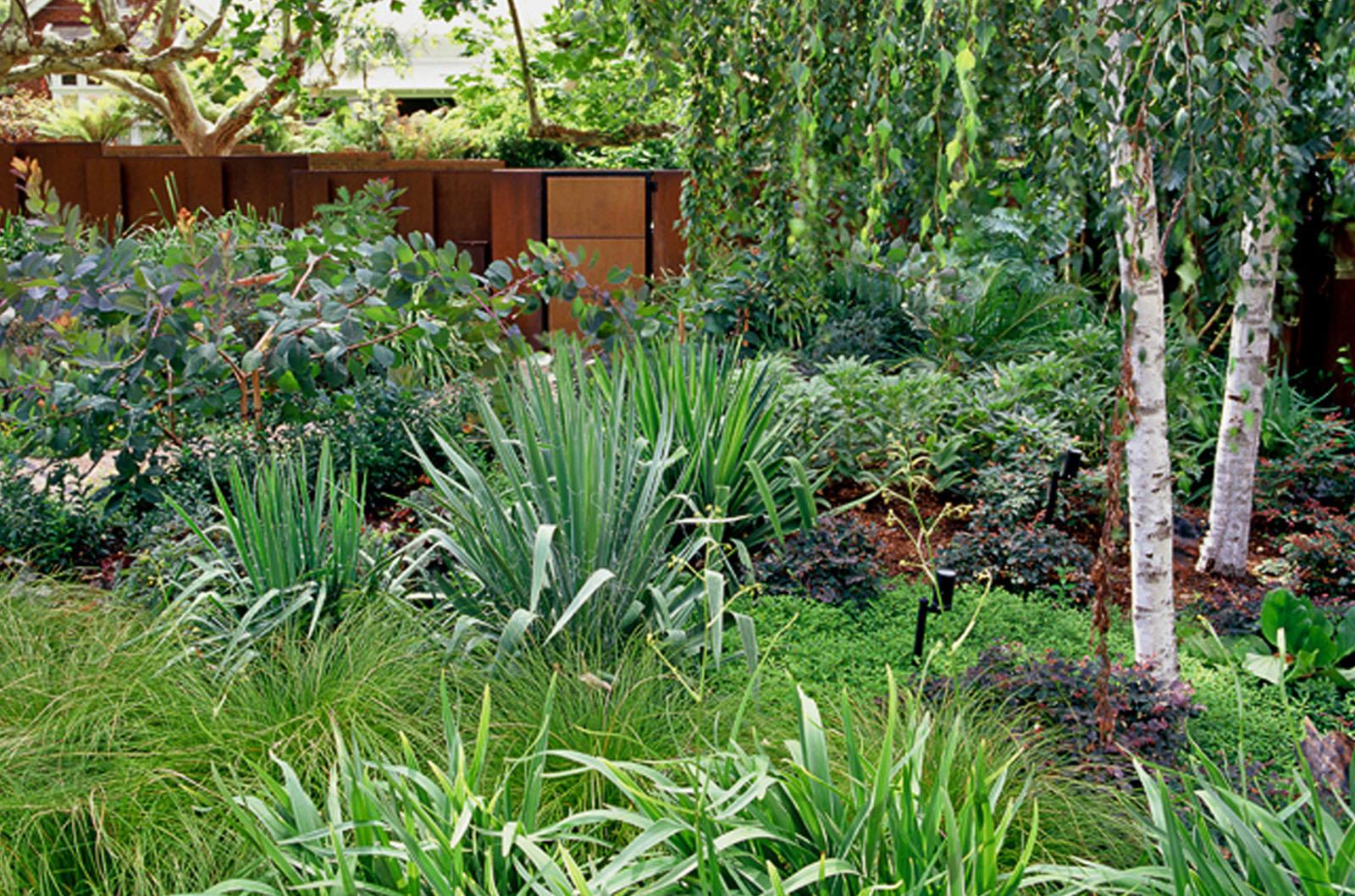 Front Garden_0007s_0006_Wyles-12