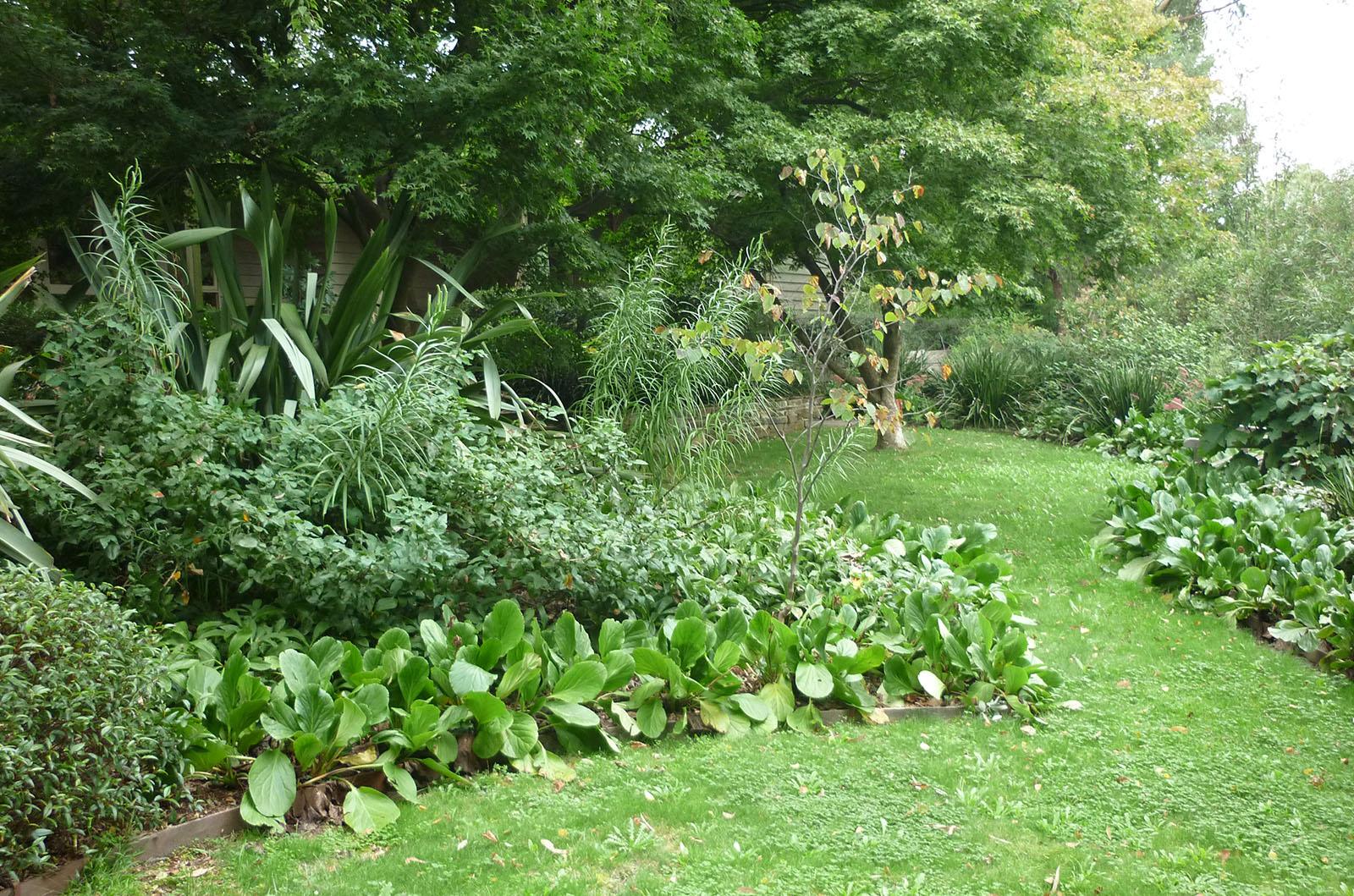 Garden in the Hills_0000s_0002_Vinen 11