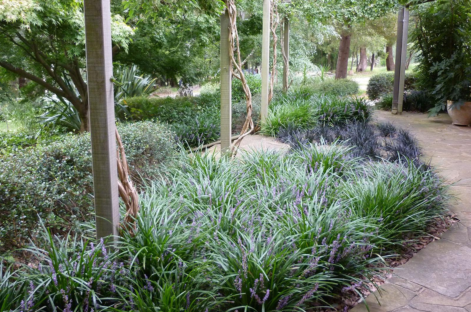 Garden in the Hills_0000s_0006_Vinen 6