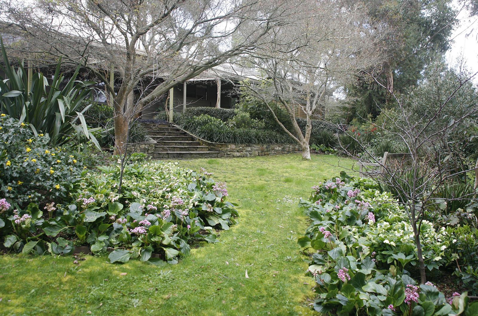 Garden in the Hills_0000s_0009_Vinen 2