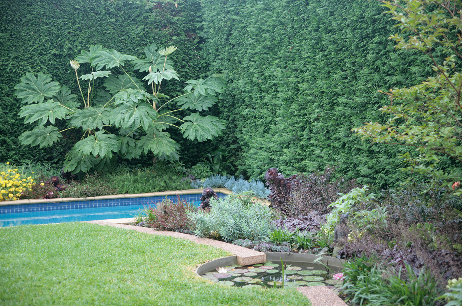 Sculptured Garden_0005s_0009_Hughes 6